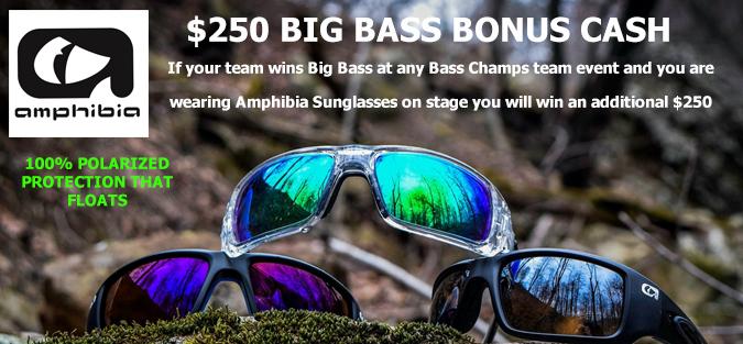 Amphibia Sunglasses
